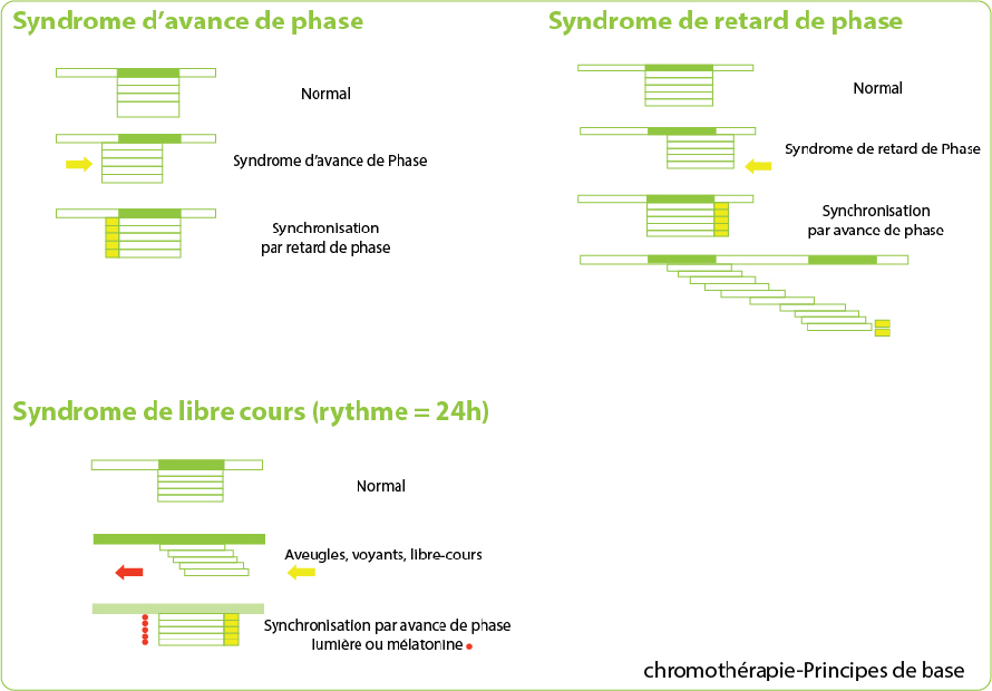 Principes de base de la chronothérapie